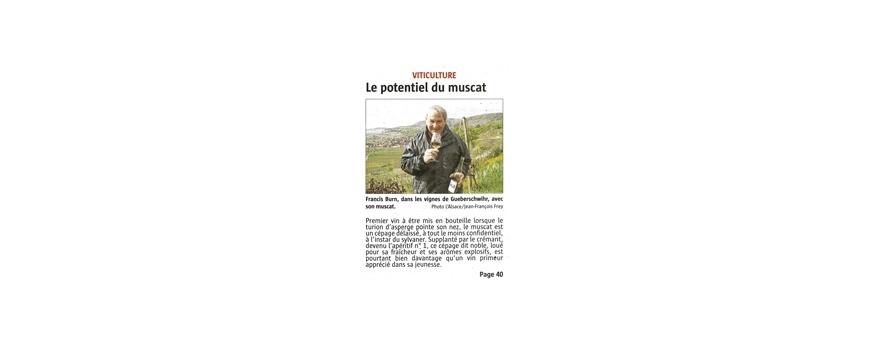 Le MUSCAT du CLOS SAINT-IMER à l'honneur dans le journal « L'Alsace » !