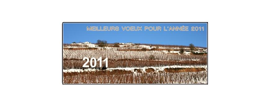 NOUS VOUS SOUHAITONS UNE MERVEILLEUSE ANNÉE 2011 !